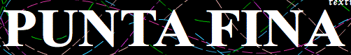 logo Puntafina